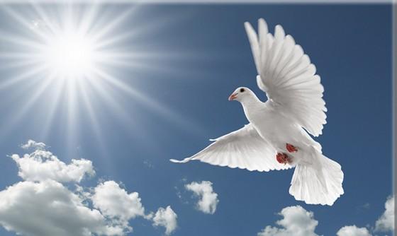 Nowenna przed Zeslaniem Ducha Swietego