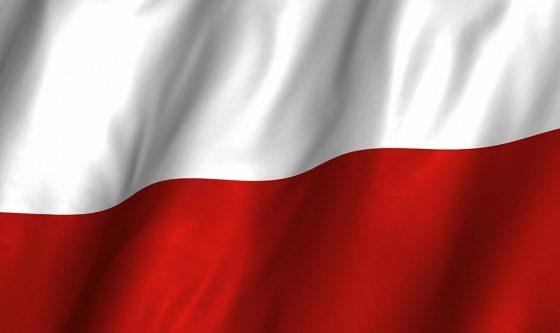 flafa-polski